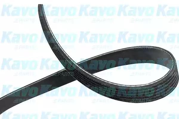 20 Length XL D/&D PowerDrive A6B3100025 SDP Steyr Daimler Puch Replacement Belt Rubber